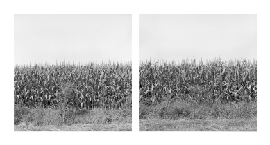 Ormstown, 2016